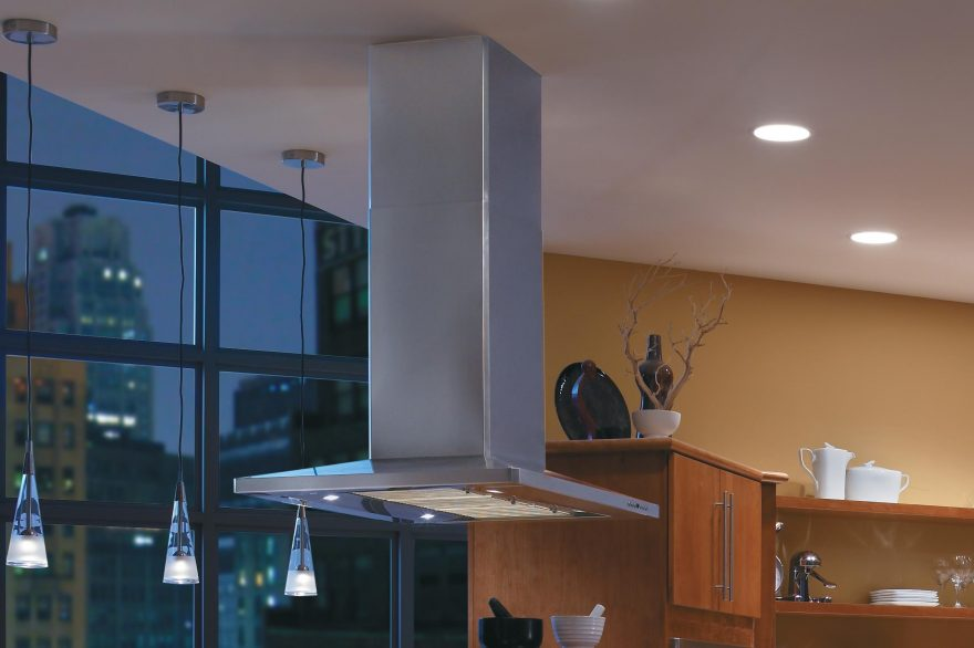 Stainless Steel Ceiling Mount